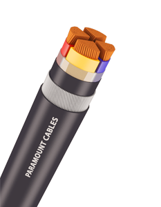 http://paramountcables.com/wp-content/uploads/2017/08/03_lt-power-cable_long.png